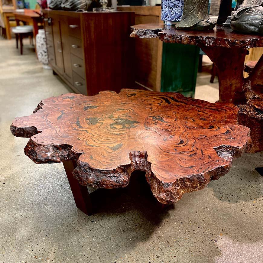 Atlanta burl coffee table in River Red Gum