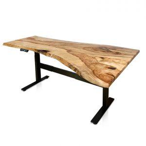 Zylem Slab height-adjustable desk in Camphor Laurel